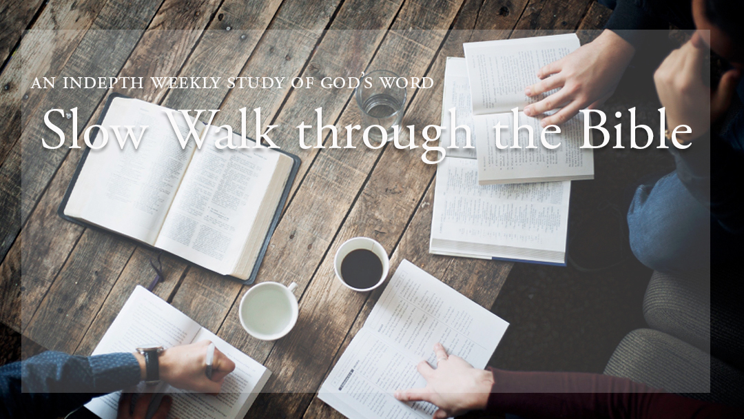 Bible Calendar For February 2020 Slow Walk Through the Bible   St. Thomas Episcopal Church